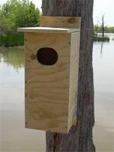Tel woodworking wood duck nesting box publicscrutiny Choice Image